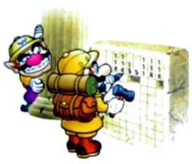 Mario_and_Wario_P2.png