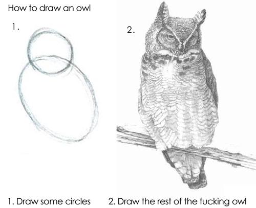 owldrawing.jpg